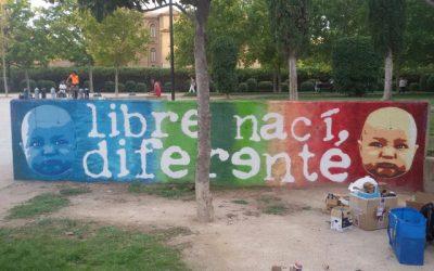 Colonia Artística Delicias 2015
